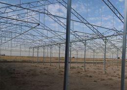 پروژه گلخانه 5000 متری گل رز