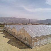 پایان نصب پوشش پلی کربنات گلخانه 5200 متری گل آلسترومریا - یاسوج